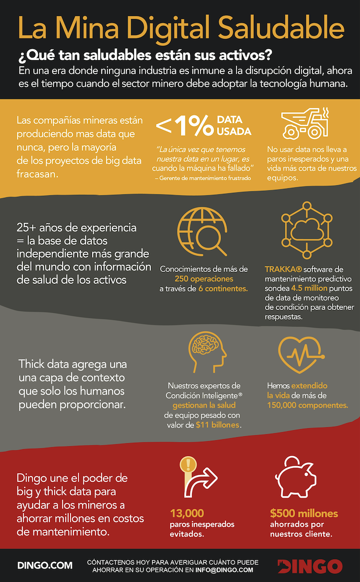 Infografia-thick-data-big-data-dingo-ammmec