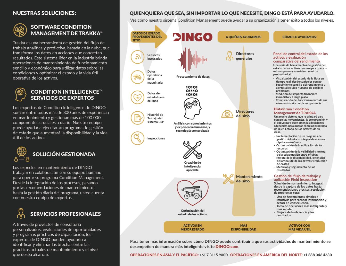 proceso-para-solucion-dingo-2