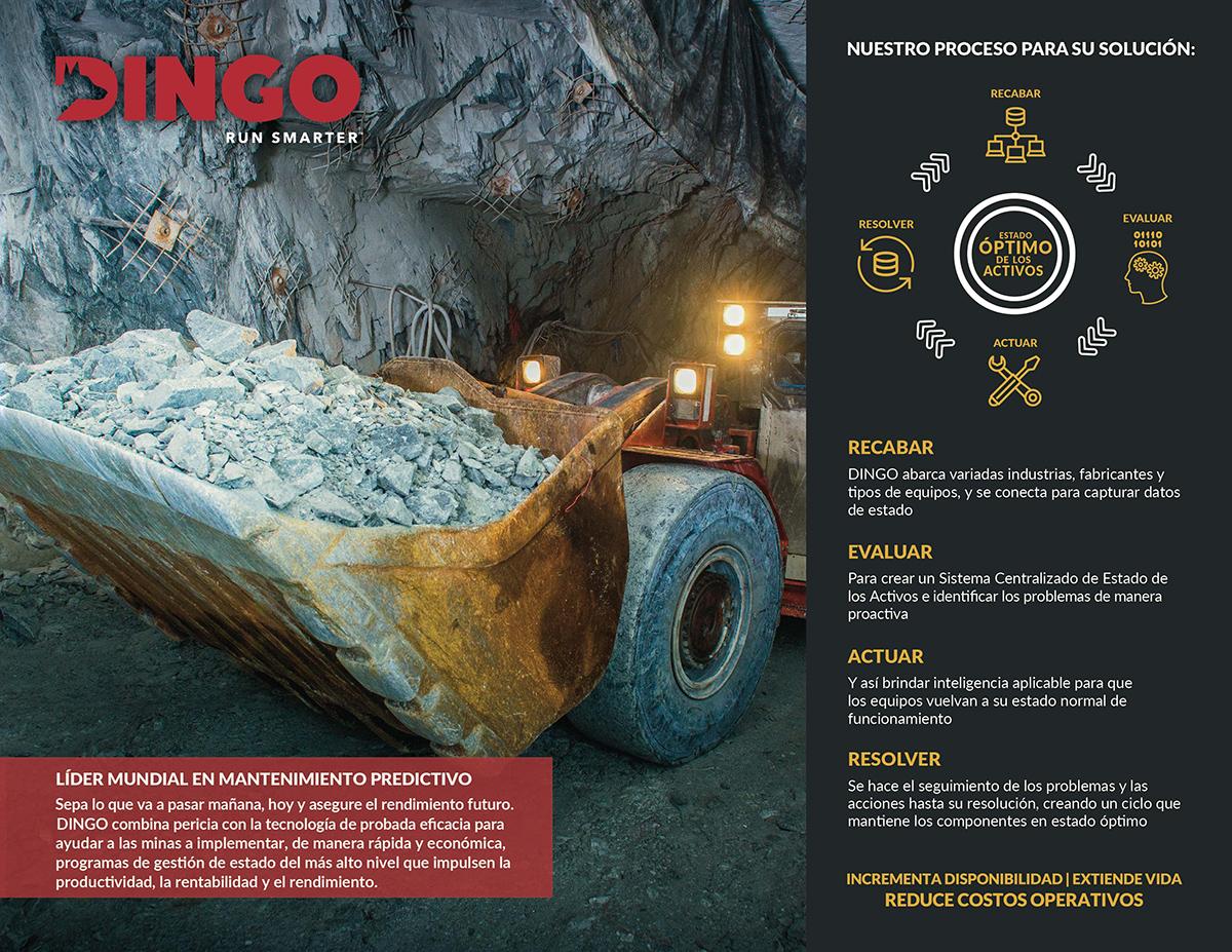 DINGO-Brochure-de-la-Empresa_09-21-17-01