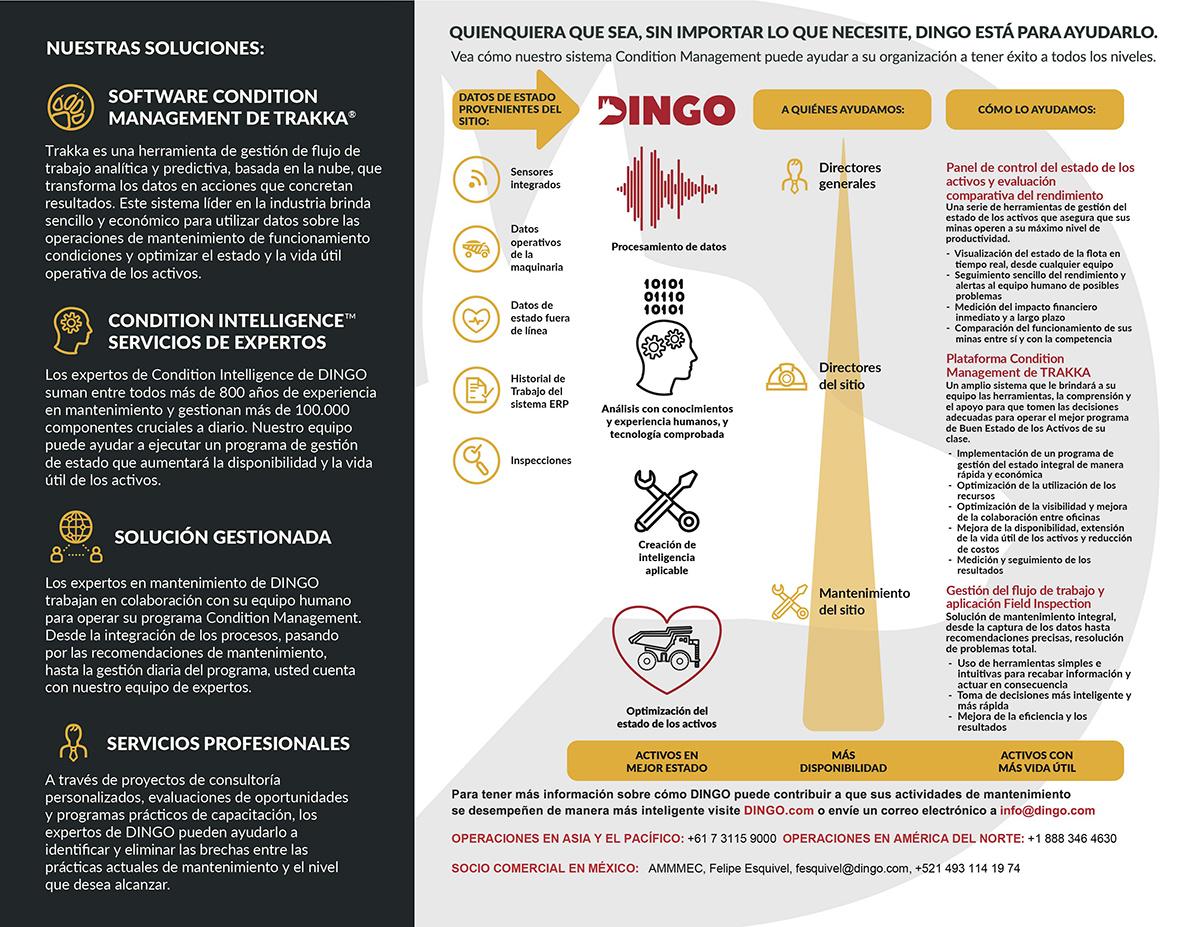 DINGO-Brochure-de-la-Empresa_09-21-17-02