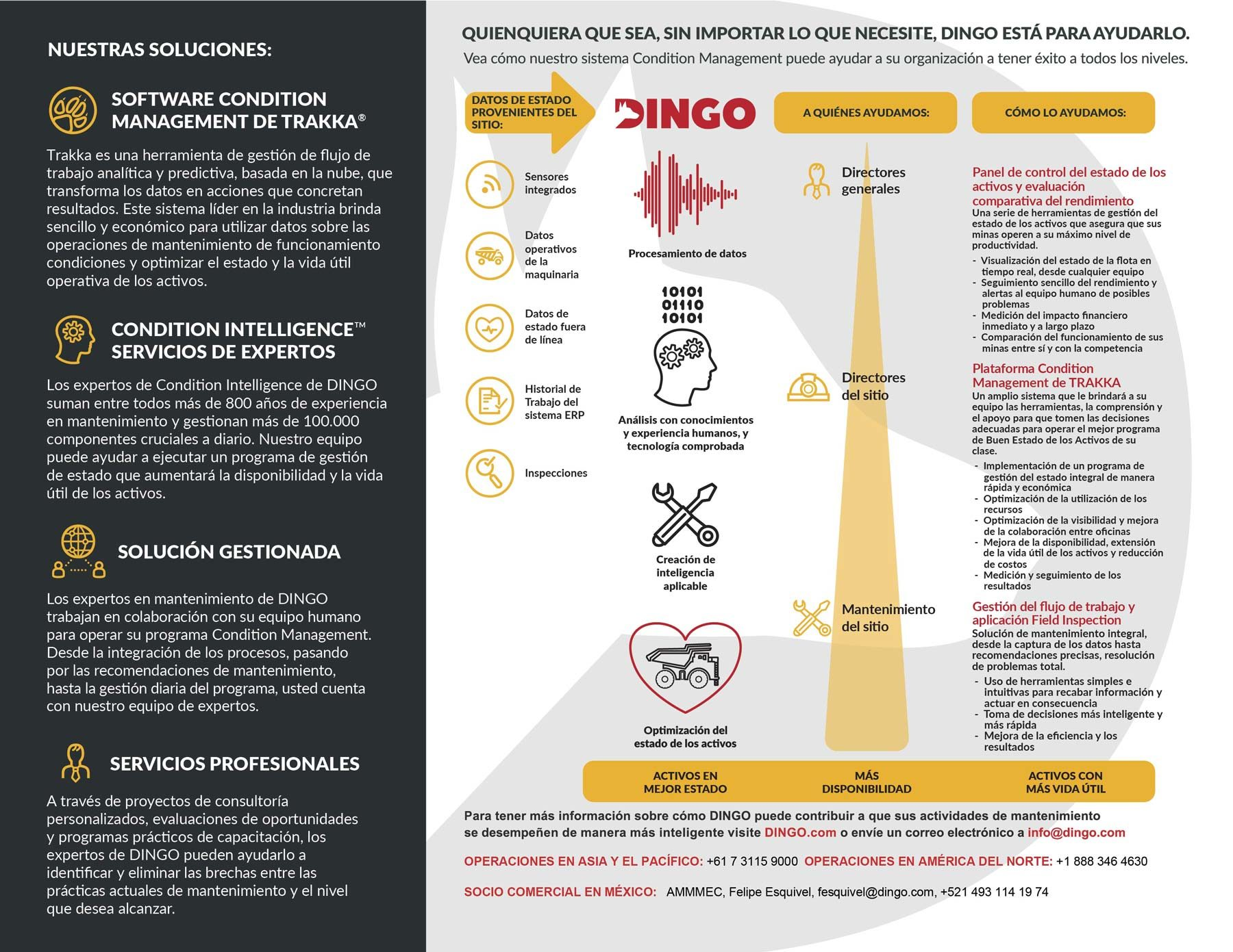 Soluciones-Dingo-2