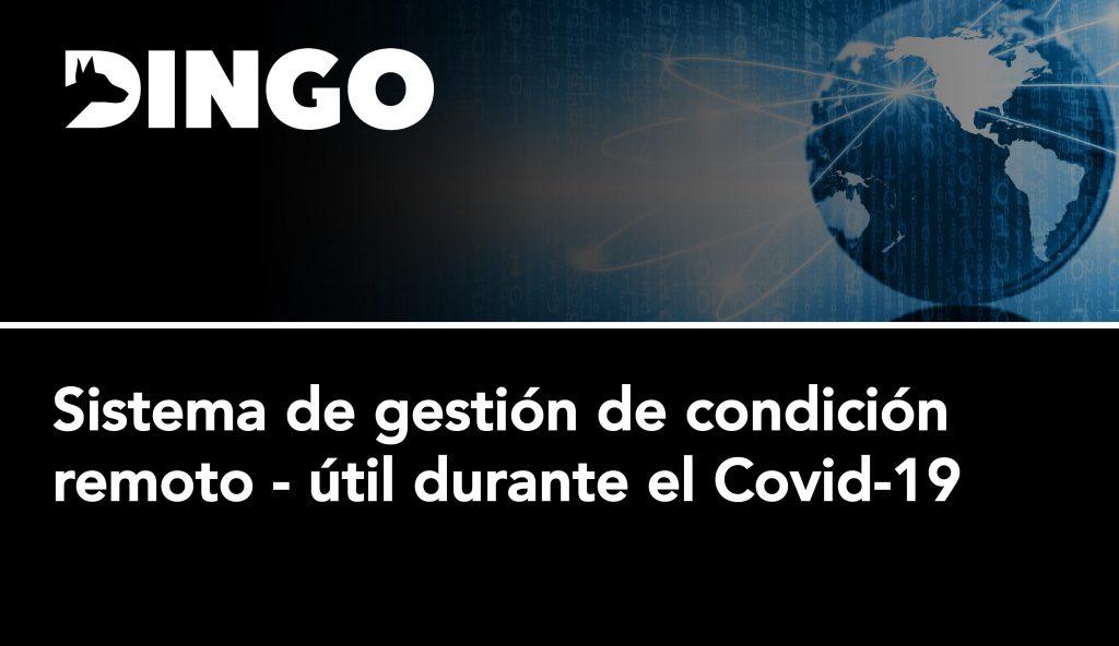Sistema-gestion-condicion-remoto-covid19-dingo-17