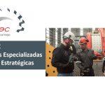 AMMMEC Soluciones Especializadas y Alianzas Estratégicas