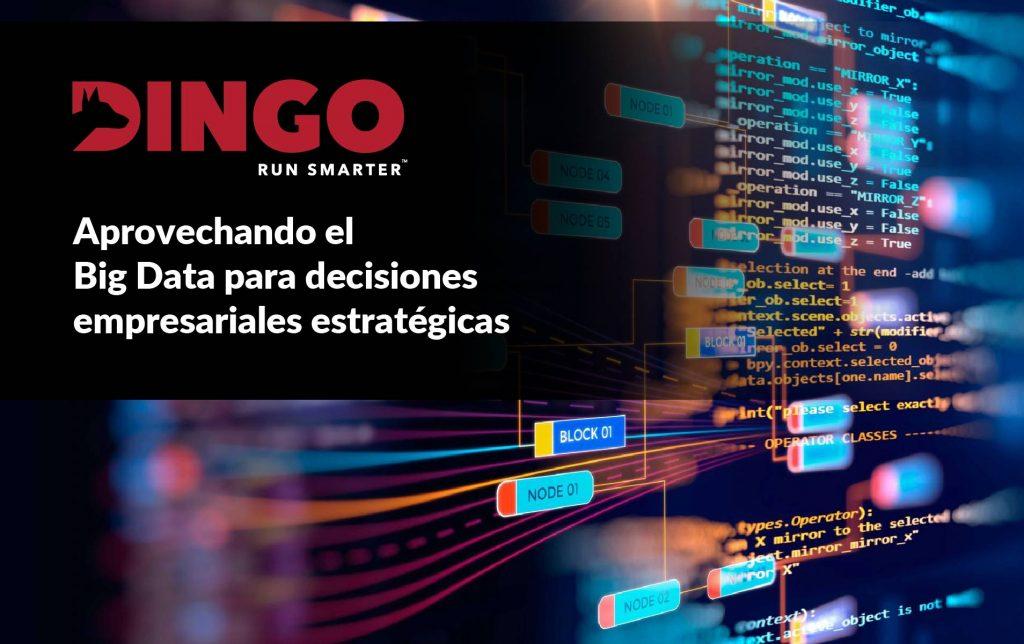 Dingo-Big-Data-Mineria-