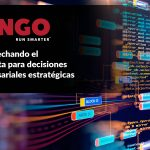 Dingo-Big-Data-Mineria-
